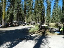 Robinson Flat -- crew tucks in-between the trees and scope out relatively flat spots to stash horse/rider for an hour