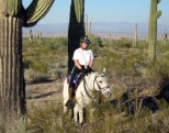 Training ride in our favorite slice of the Sonoran Desert. Sometime in the mid 2000s.