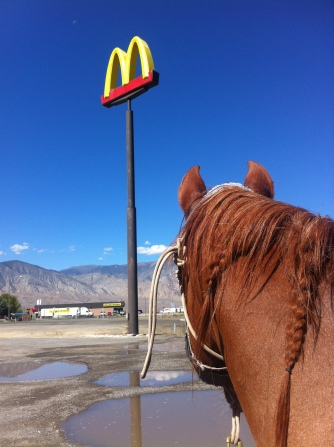 obligatory MickeyD's road trip stop. Beeba can be their new mascot.