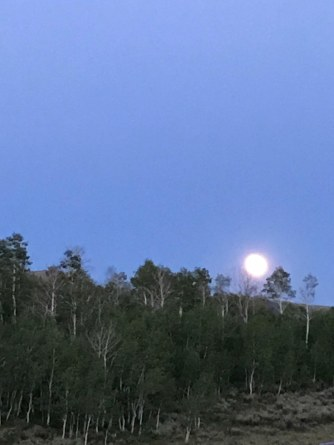 Full moon on Wednesday night
