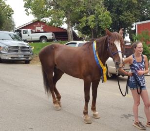 Haggin Cup winner MM Cody (a Mustang!)