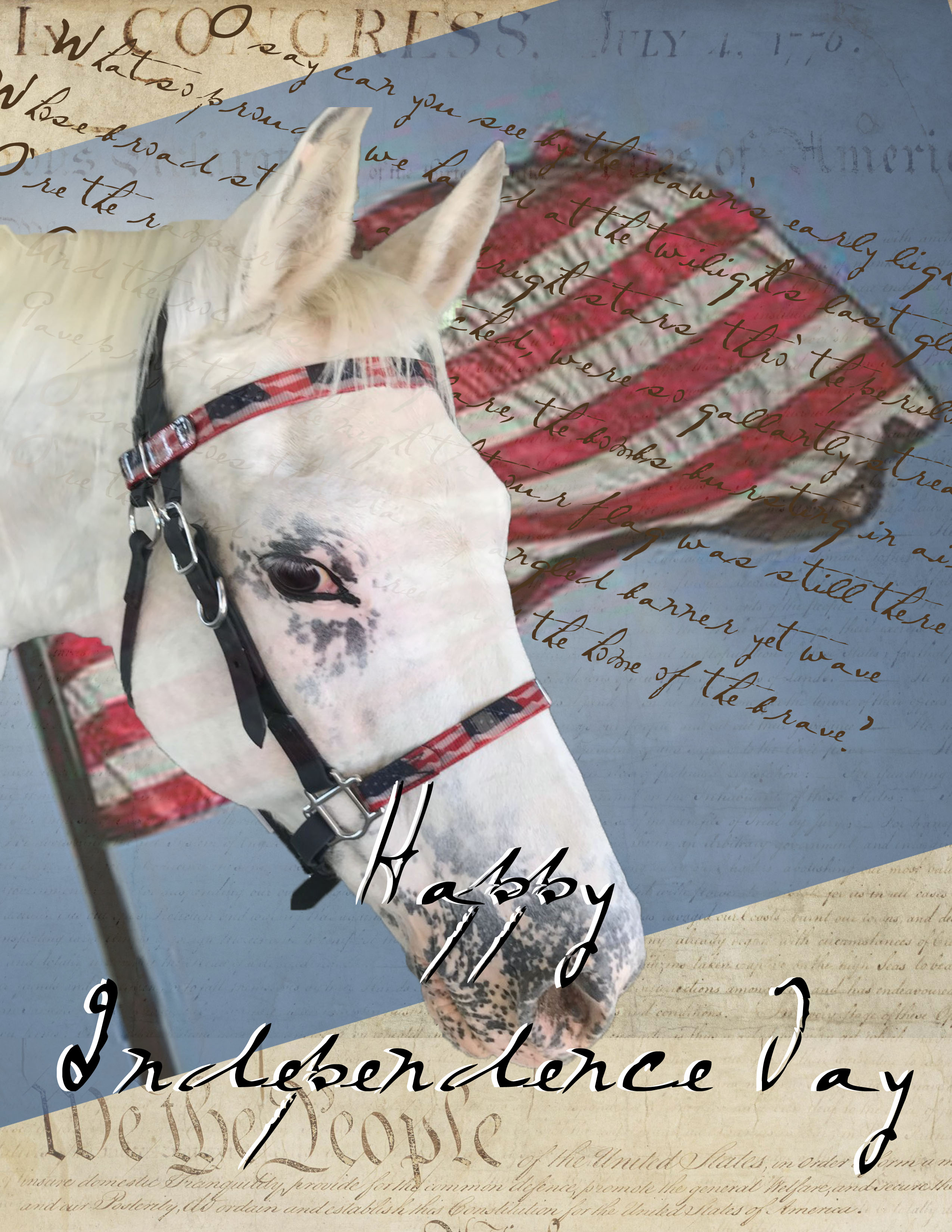 IndependenceDay2020 -- blog copy